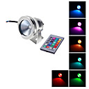 cheap Car Interior Lights-1000 lm LED Floodlight LED Beads Remote-Controlled RGB 12 V