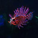 저렴한 수족관 장식-물고기 용품 수족관 장식 모형 물고기 장식 레진