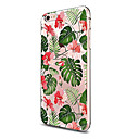 Buy Case IPhone 7 6 Flower TPU Soft Ultra-thin Back Cover iPhone PLUS 6s Plus SE 5s 5 5C 4S 4