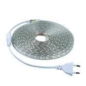 6W 유연한 LED 조명 스트립 20 lm AC 220-240 V 5 m 300 LED가 웜 화이트 화이트 레드 블루 그린