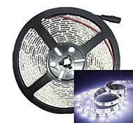 preiswerte -500cm 30w 300LED 3528smd dc12v Streifen-Licht RGB IP68 wasserdicht Streifenlicht weiß transparent Fernbedienung