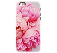 cheap -Blossomy Rose Design PC Hard Case for iPhone 7 7 Plus 6s 6 Plus