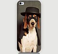 cool dog pattern phone Fall rückseitigen Abdeckung für iphone5c
