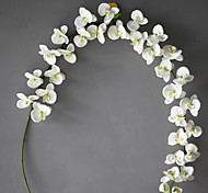 cheap -Artificial Flowers 1 Branch Simple Style Orchids Tabletop Flower