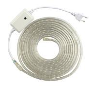 2m eu 220 VAC rgb wasserdicht Seil Licht für den Außenbereich 5050 Band Gartenlicht Baum Lichter Weihnachtsbeleuchtung RGB-Controller