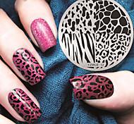 manicure placa circular geometria zebra membrana azul selo DIY modelo de impressão