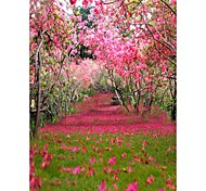 Peach GardenBackground Photo Studio  Photography Backdrops 5x7FT