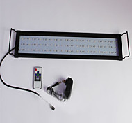 Aquários Aquário Decoração Iluminação de LED Mudança Atóxico & Sem Sabor Lâmpada de LED 220V