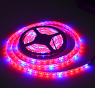 cheap -LED Grow Lights Growing LED Strip 5050 IP20 IP65 IP68 Plant Growth Light for Greenhouse Hydroponic plant 5m/lot AC100-240V