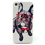 iPhone 7 Plus Glass Dog Animal Pattern Hard Case for iPhone 5/5S