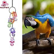 Ptak Zabawki dla Ptaków Stalowy Plastik Wielokolorowy