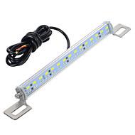 Недорогие Задние фонари-exLED 31mm Автомобиль Лампы 10W SMD 5630 30lm 30 Светодиодная лампа Задний свет
