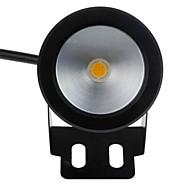 billige LED-projektører-Undervandslamper Bærbar Let Instalation Vandtæt Varm hvid Kold hvid DC 12V