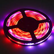 25W W ライトセット lm AC 100-240 5 m 150 LEDの RGB