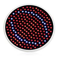 billiga Växthuslampor-1500 lm E26/E27 Växande glödlampor 200 lysdioder Röd Blå AC 85-265V
