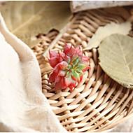 olcso Lakberendezés-1 Ág Poliészter Succulent növények Asztali virág Művirágok