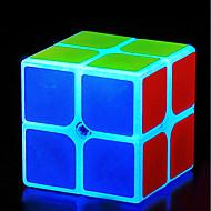 お買い得  -ルービックキューブ z-cube ルミナスグローキューブ 2*2*2 スムーズなスピードキューブ マジックキューブ パズルキューブ ストレスや不安の救済 オフィスデスクのおもちゃ 夜光計 クラシックテーマ 夜光 子供用 成人 おもちゃ 男女兼用 ギフト
