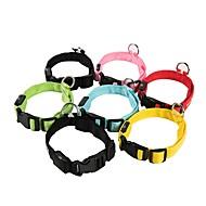 저렴한 -애완견 용품 / 고양이 용품 / 작은 애완동물 칼라 조절 가능 / 리트랙터블 / LED 표시 등 깜박임 솔리드 폴리 에스터 블루 / 핑크 / 무지개