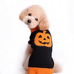 voordelige Hondenkleding & -accessoires-Kat Hond Truien Hondenkleding Pompoen Zwart Katoen Kostuum Voor huisdieren Heren Dames Schattig Halloween