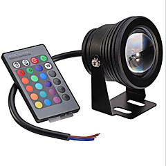 10W Festoon Υποβρύχιο Φως Χωνευτή εγκατάσταση 1 Ενσωματωμένο LED 600-700 lm RGB / κ Με ροοστάτη Τηλεχειριζόμενο Διακοσμητικό AC 12 V