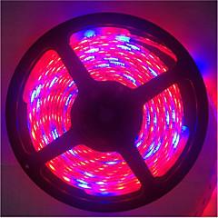 E14 Luz de LED para Estufas Tubo 300 SMD 5050 1300LM lm Vermelho Azul K Impermeável Decorativa DC 12 V