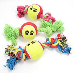 Jucărie Pisică Jucării Cățel Jucării Animale Minge Jucării de Mestecat Interactiv Jucărie Curățare Dinți Desene Animate Funie Elastic