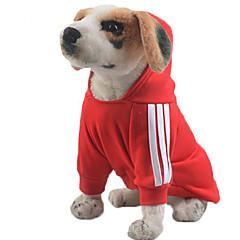 كلب هوديس كنزة ملابس الكلاب كاجوال/يومي صلب رمادي أصفر أحمر أزرق زهري