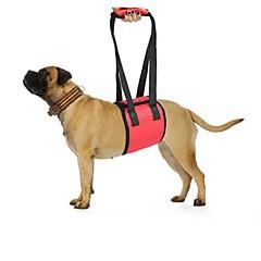 お買い得  犬用首輪/リード/ハーネス-犬 ハーネス 安全用具 ソリッド ポリエステル ブラック レッド ブルー