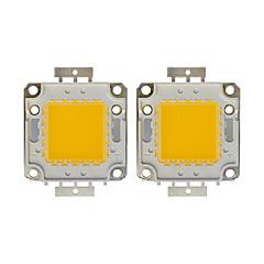 voordelige LED's-100w cob 8000lm 3000-3200k / 6000-6200k warm wit / wit licht led chip dc30-36v 2 stks