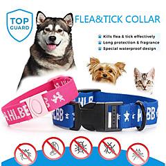 お買い得  犬用品-犬用 / 猫用 カラー カジュアル/普段着 / 安全用具 メッセージ ポリエステル
