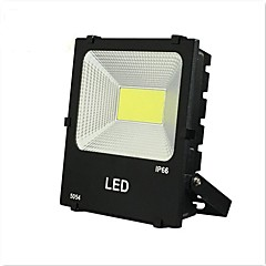 رخيصةأون أضواء خارجية-1PC 50 W أضواء الفيضان LED ضد الماء / ديكور أبيض دافئ / أبيض كول 220 V إضاءة خارجية / فناء / الحديقة 1 الخرز LED