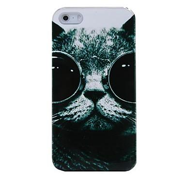 Glasses Cat Plastic Back Case for iPhone 4/4S