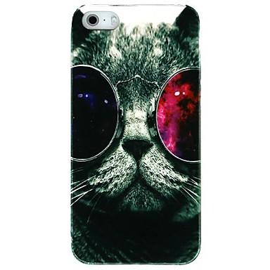 gözlük kedi plastik iphone 4 / 4s için geri durumda