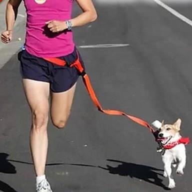 Hund Hands Free Leine Regolabile / Einziehbar Laufen Grifflos Solide Nylon Gelb Rot Grün Blau Rosa