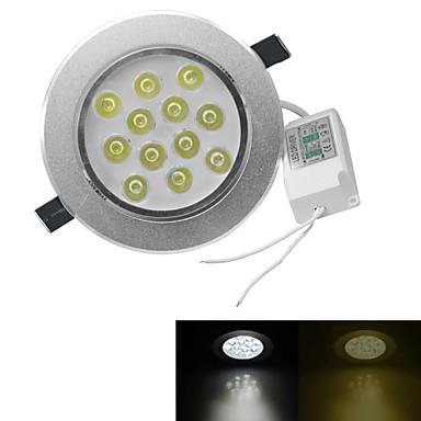 3000-3200/6000-6500 lm 12 leds Krachtige LED Warm wit Koel wit AC 100-240V