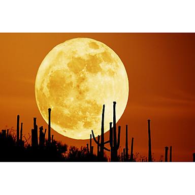 επαναφορτιζόμενες 3d φεγγάρι εκτύπωση οδήγησε τη νύχτα φως - άσπρο lightwarm λευκό φως