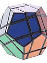 QJ 면체의 수수께끼 IQ 퍼즐 (분류 된 색깔)