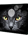 """Black Cat Face"" Patroon Nylon Materiaal Waterdicht Sleeve Case voor 11 ""/ 13"" / 15 ""Laptop & Tablet"