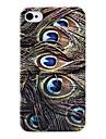 Plumes de paon arrière pour l'iPhone 4/4S