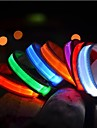 Cat Pets Dog Collar Dog Training Collars LED Lights Electric Glow Solid Nylon Red Green Blue Pink Rainbow