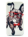 Glass Happy Dog Pattern Hard Case for iPhone 4/4S