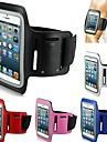 Slim Trendy Sport Armband for iPhone 6 (Assorted Color) Universal Cases & Bags