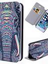 Специальный зерна слон ясно шаблон PU Полный чехол для тела с слотом для карт iPhone 5/5 секунд