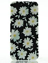 Ultra Thin White Daisies Pattern Case for iPhone 5/5S