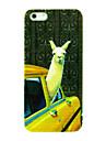 alpaga en cas de modèle de voiture pour iphone 5/5s