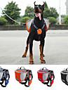 Cachorro Tranportadoras e Malas Pacote de cao Animais de Estimacao Transportadores Prova-de-Agua Portatil Laranja Vermelho Azul Preto