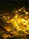String Lights 20 LEDs Warm White Remote Control / RC Dimmable Waterproof Color-Changing DC 5V DC5