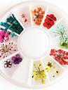 1 pcs Fleur / Mode Quotidien Nail Art Design