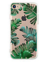 Capinha Para Apple iPhone 6 iPhone 7 Plus iPhone 7 Ultra-Fina Estampada Capa traseira Arvore Macia TPU para iPhone 7 Plus iPhone 7 iPhone