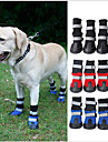 Cat Dog Shoes & Boots Waterproof Color Block Black Red Blue For Pets